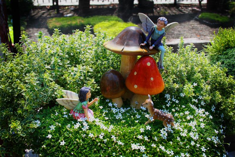 Gnome Garden: Cozy Living: Enchanting Fairy Gardens